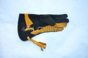 Сокольничья перчатка