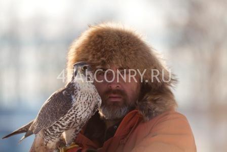 Сокольник-философ Константин Соколов
